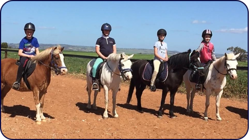 Horse Mad Gang Horse Riding Lessons Adelaide