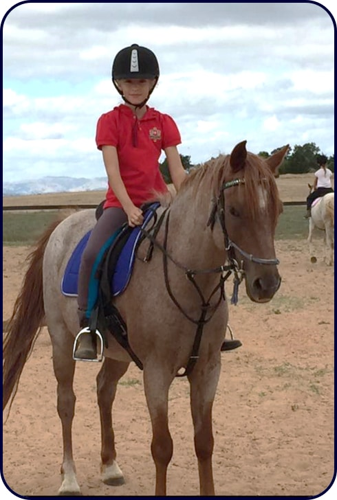 Adelaide Northern Horse Riding School - Arthur