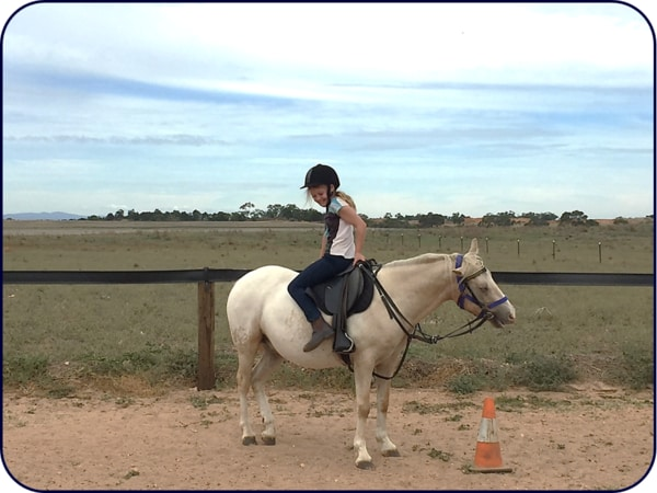 Adelaide Northern Horse Riding School - Rupert