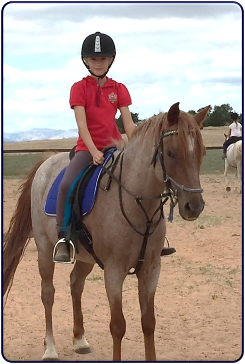 Horse Riding School Adelaide at Alba View Equestrian