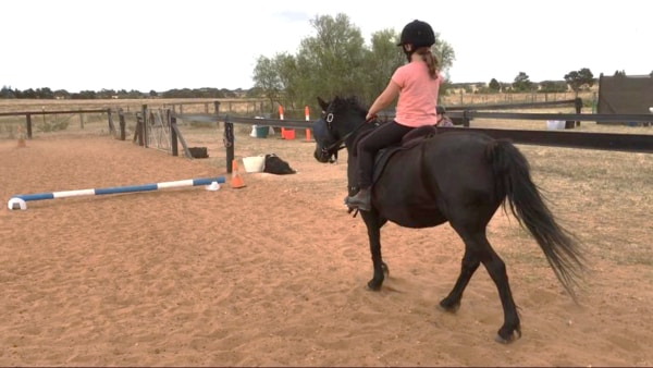 Alba View Equestrian Horse Riding Adelaide - Horse Mad Gang 5