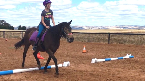 Horse Riding Barossa Valley - Horse Mad Gang 2017