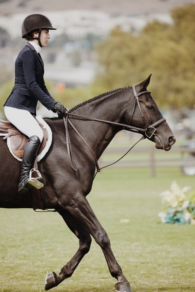 How To Keep Your Heels Down When Riding - Straight Line Posture