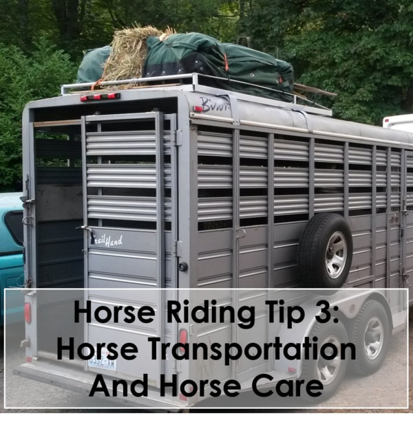 Horse Riding Tip 3 Horse Transportation