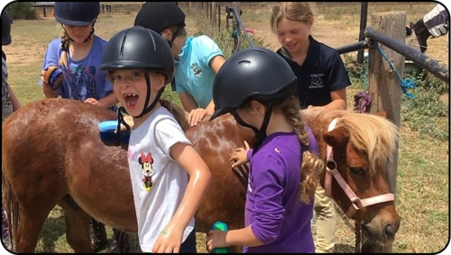 School Holiday Horse Riding Lessons Adelaide