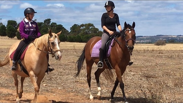 Alba View Equestrian Horse Riding Adelaide - Adult Horse Riding 2018-1