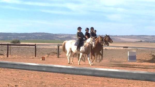 Alba View Equestrian Horse Riding Adelaide - Adult Horse Riding 2018-2