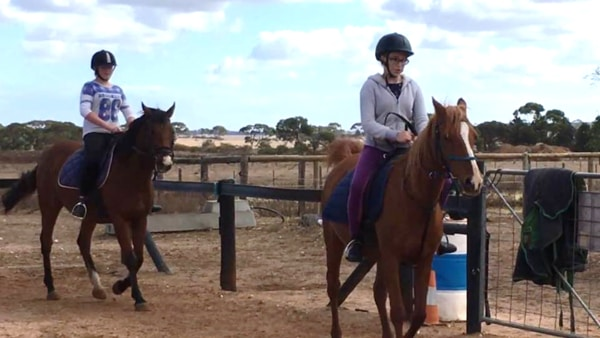 Alba View Equestrian Horse Riding Adelaide - Horse Mad Gang 2018-5
