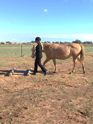 Alba View Equestrian Horse Riding Adelaide - Horse Mad Gang 2018-7