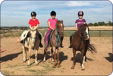 Alba View Equestrian - Horse Riding School Adelaide Horse Mad Gang