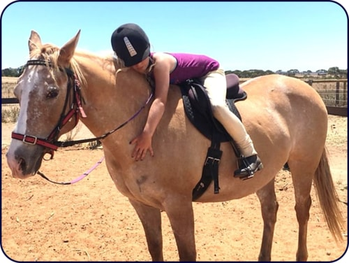 Horse Riding In Adelaide - Honey Bunny