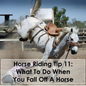 Horse Riding Tip 11 What To Do When You Fall Off A Horse